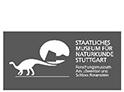Tape Art für das Staatliche Museum für Naturkunde Stuttgart
